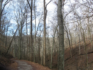 Mammoth Cave River Styx Trail in Winter