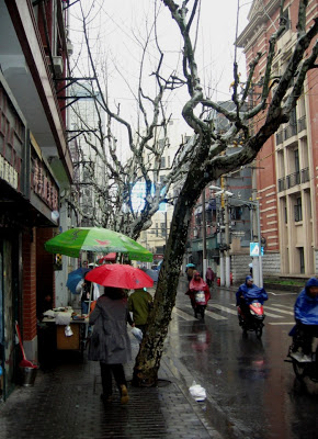 Shanghai street scene in the rain