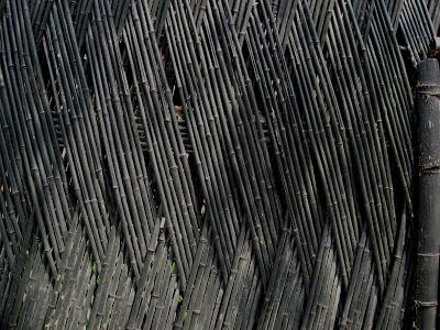 Bamboo fence pattern