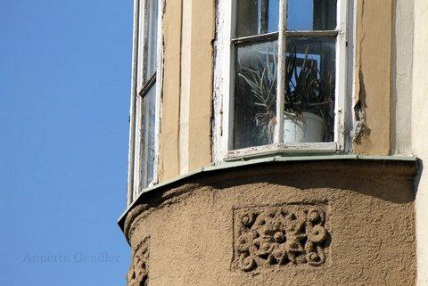 Turret window with cacti