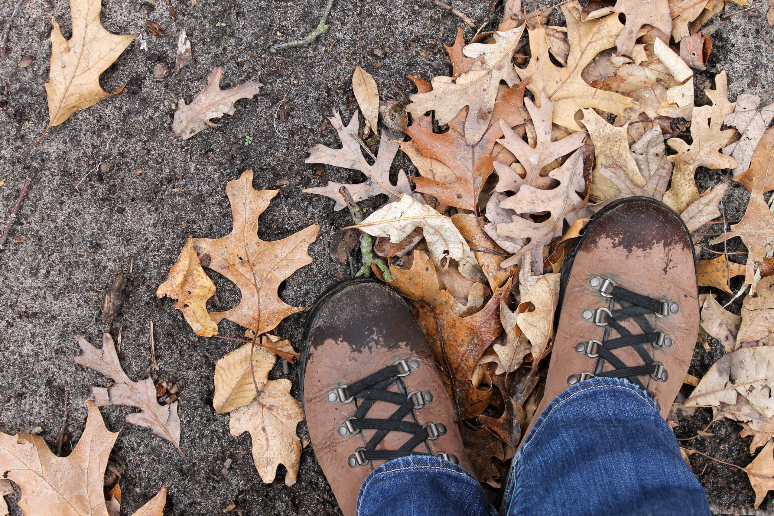 Hiking boots in a pile of leaves in autumn